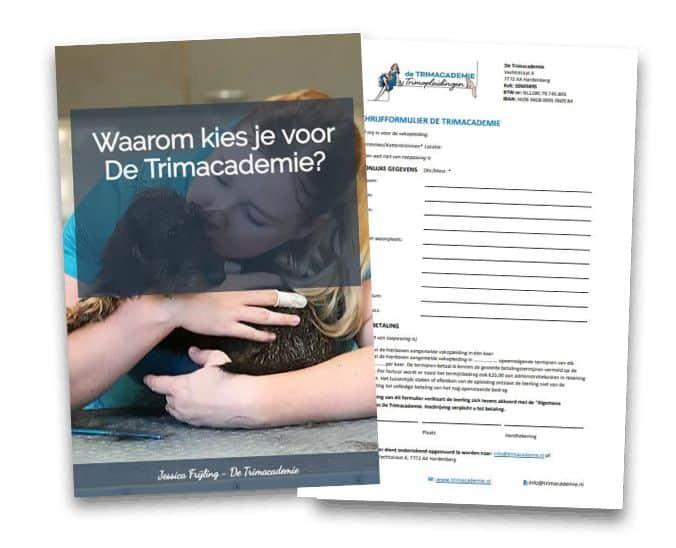 E-book Waarom kies je voor De Trimacademie?